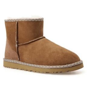 Фото UGG Classic Mini Liberty Chestnut
