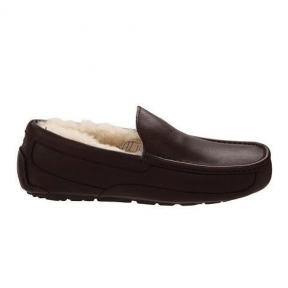 Фото UGG Ascot Leather Brown